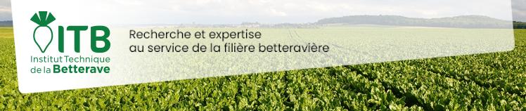 Centre / Val-de-Loire - 7 mai 2020