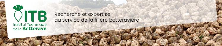 Ile-de-France - 8 novembre 2019